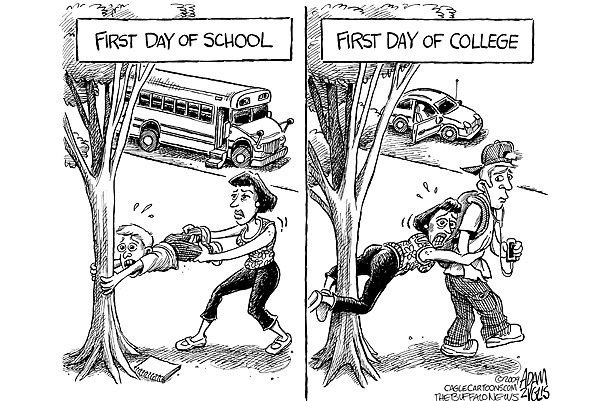 School vs College