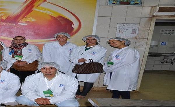 Internship at Unilever