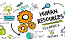 Building a career in Human Resources – All you need to know
