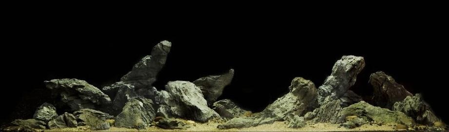 bố cục đá cát hồ thủy sinh