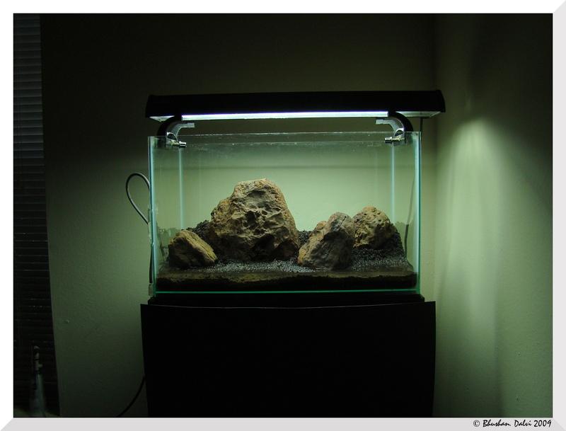 Tác giả sử dụng 4 viên đá, không theo quy tắc Iwagumi