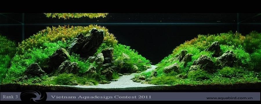 bể thủy sinh vadc 2011 thichduthu