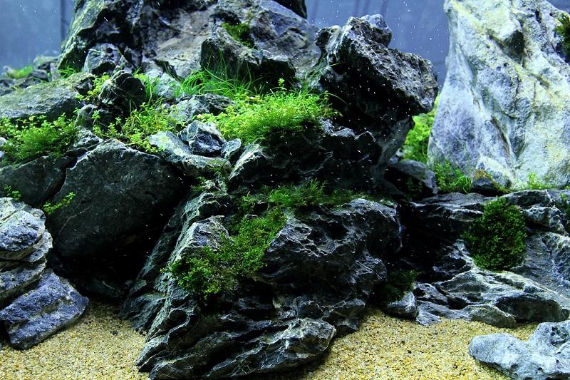 đá thủy sinh seiryu