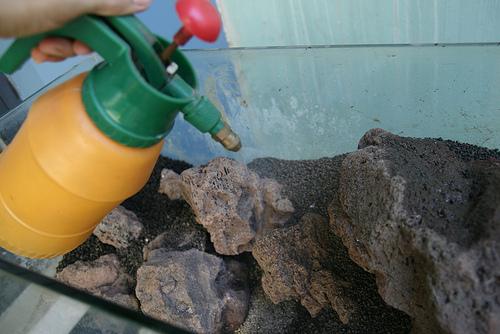 phun nước làm ẩm nền bể thủy sinh