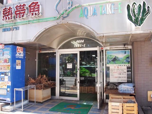 cửa hàng thủy sinh