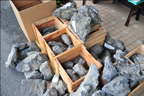 các loại đá thủy sinh