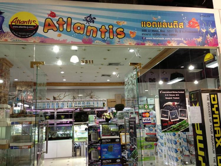cửa hàng thủy sinh Thái Lan