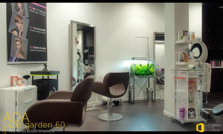 hồ thủy sinh tiệm cắt tóc