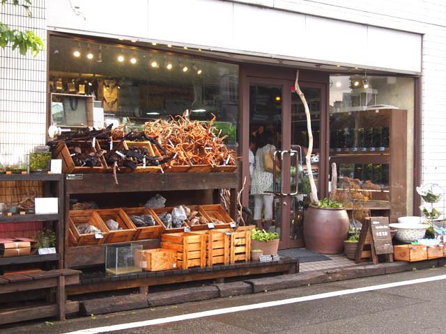 cửa hàng thủy sinh tại Nhật