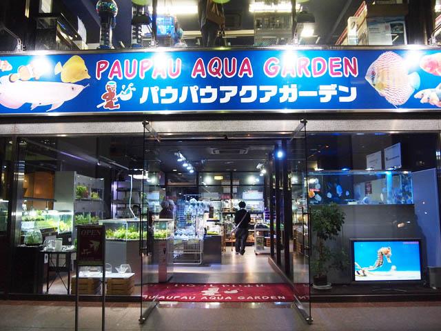 cửa hàng thủy sinh cá cảnh