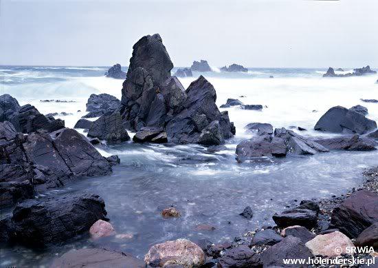 iwagumi trong thiên nhiên Nhật Bản