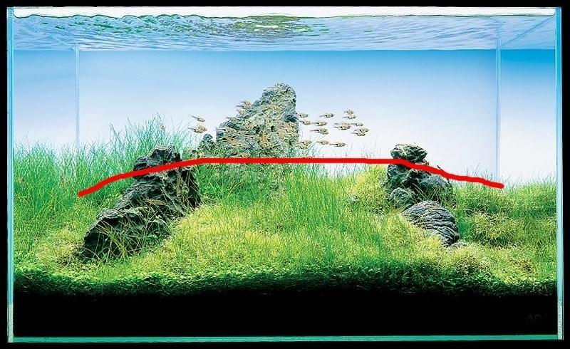 iwagumi đá sắp đặt hình tam giác
