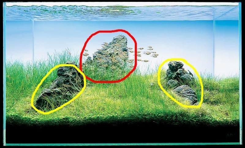 điểm nhấn iwagumi là khối đá lớn