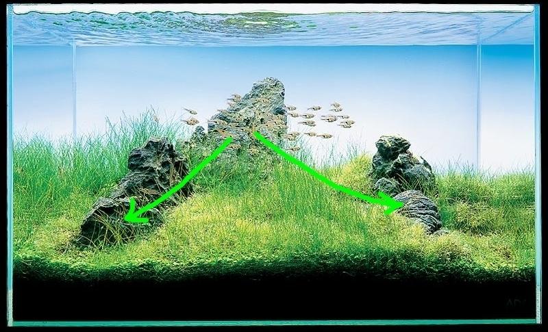 các đường dốc trong hồ thủy sinh iwagumi