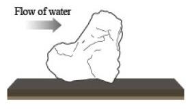 cách xếp đá Oyaishi trong iwagumi