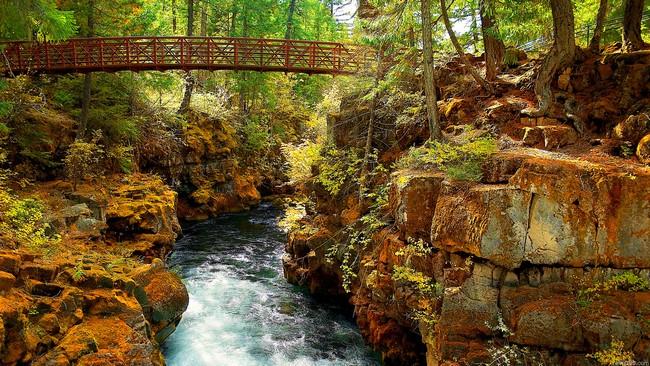 bố cục đá thủy sinh trong thiên nhiên