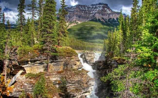 núi rừng và thác nước
