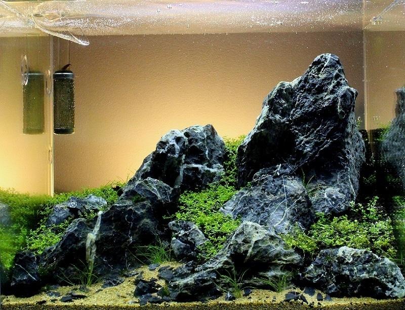 mô phỏng cảnh hoàng hôn bể thủy sinh nano