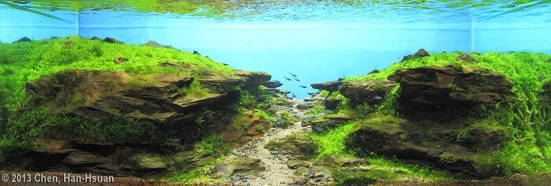 bể thủy sinh có chiều sâu