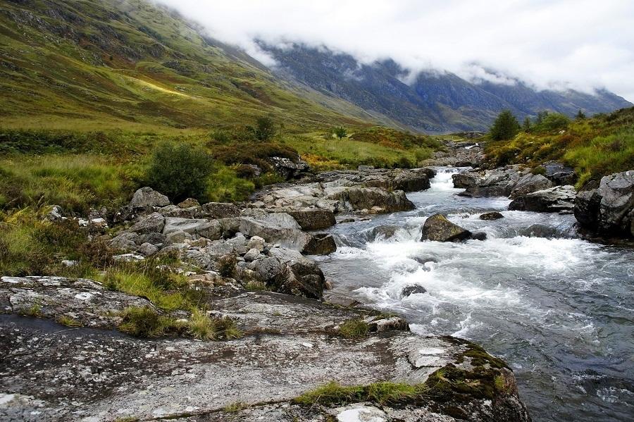 cảm hứng cho bố cục sông trong thủy sinh