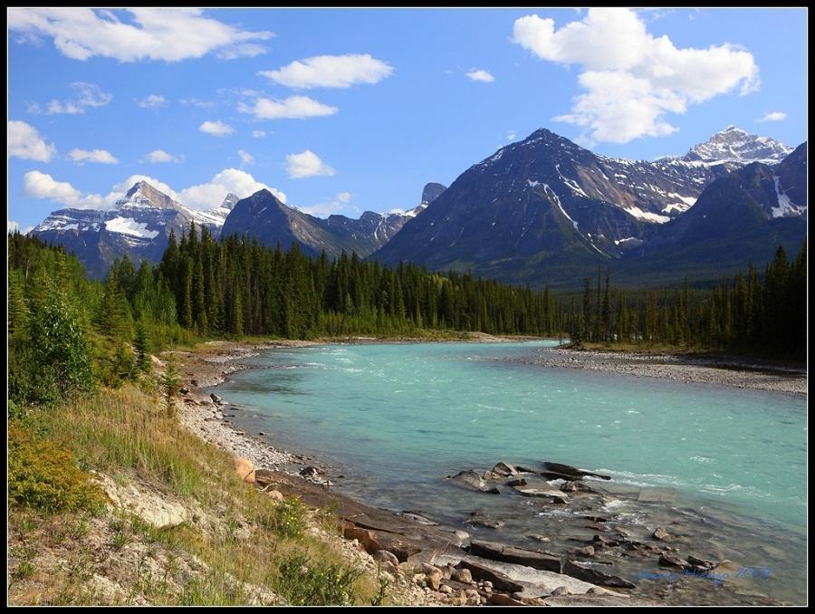 bố cục sông, rừng và núi