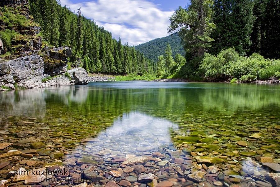 beauty river lanscape for aquarium