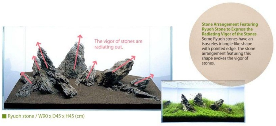 bố cục thủy sinh sức sống của đá