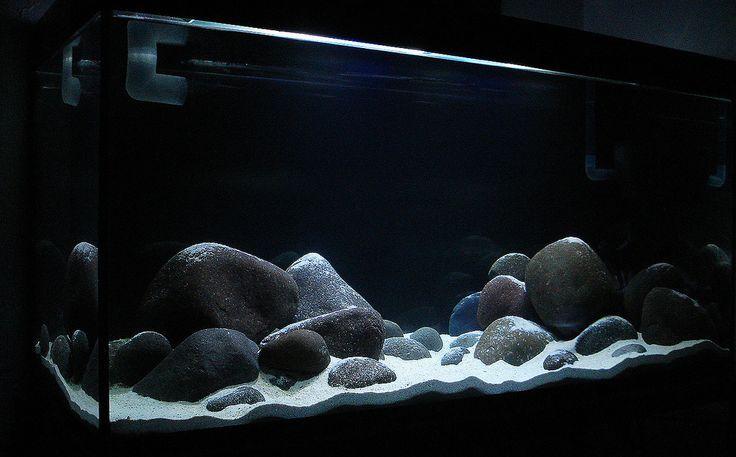 hồ cá ali sử dụng đá cuội