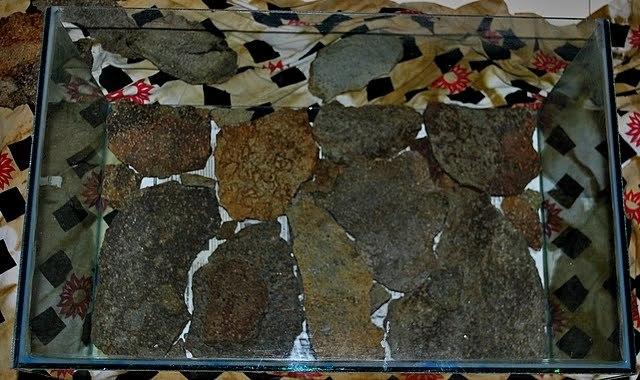 dính đá lên kính bể thủy sinh