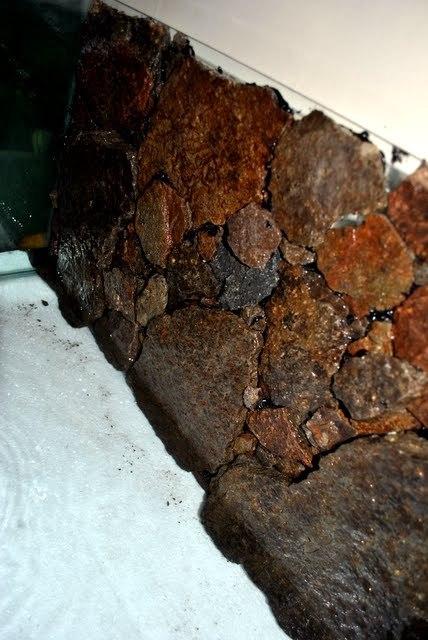 silicon đen dán đá