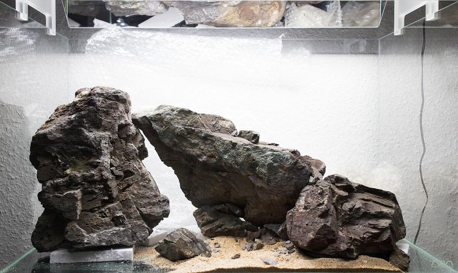 thêm đất nền vào bố cục hồ thủy sinh