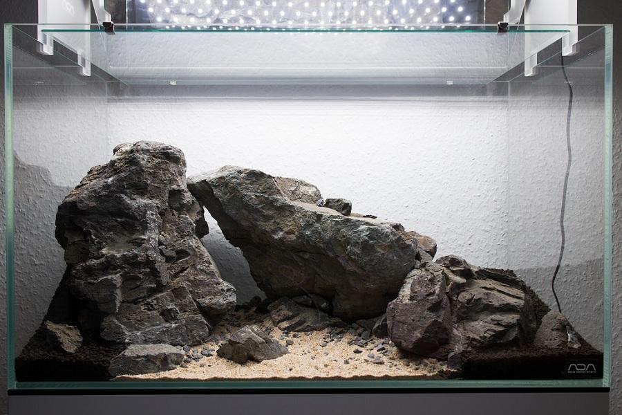 hoàn thiện bố cục đá trong hồ thủy sinh