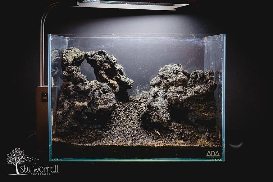 đá nham thạch đen trong bể thủy sinh