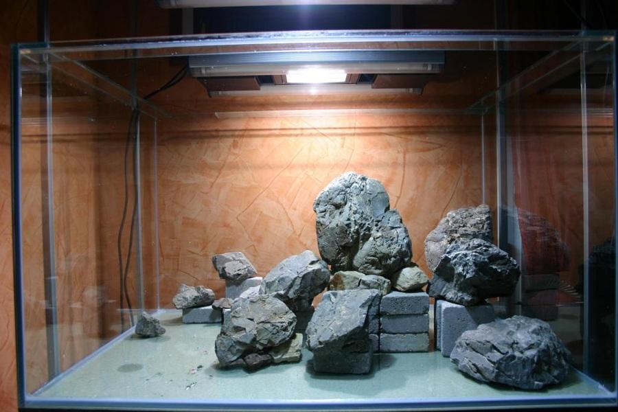 đá trong bể thủy sinh
