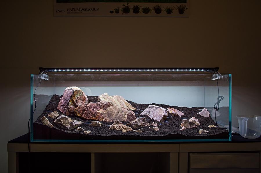 sắp xếp bố cục đá bể thủy sinh