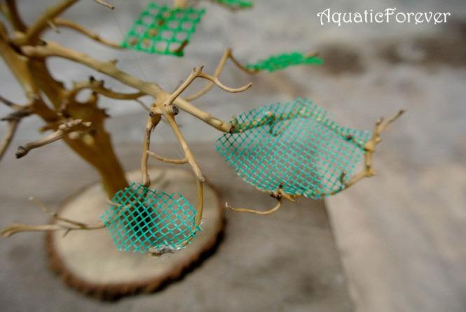buộc vỉ lưới nhựa vào cây