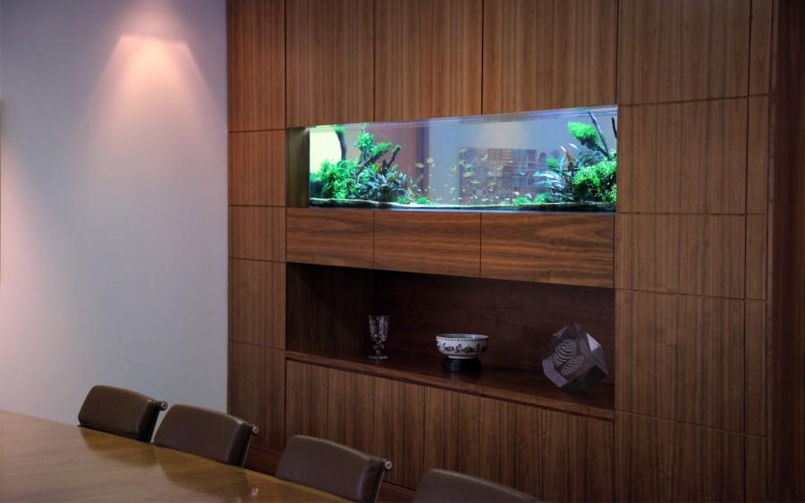 thiết kế bể thủy sinh vách ngăn gỗ