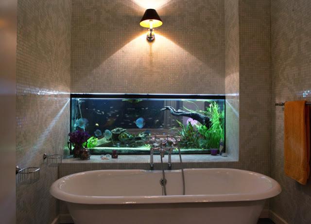 thiết kế bể thủy sinh trong hốc tường