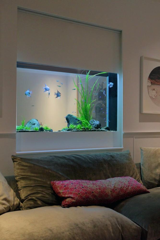 thiết kế bể thủy sinh đơn giản