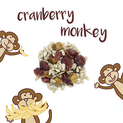 medium image of cranberry monkey