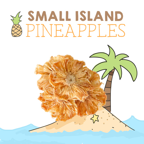 medium image of small island pineapples