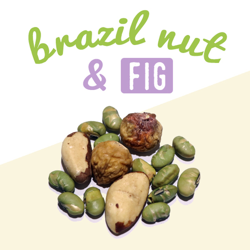 image of brazil nut & fig-30g