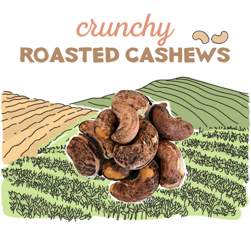 medium image of crunchy roasted cashews -30g