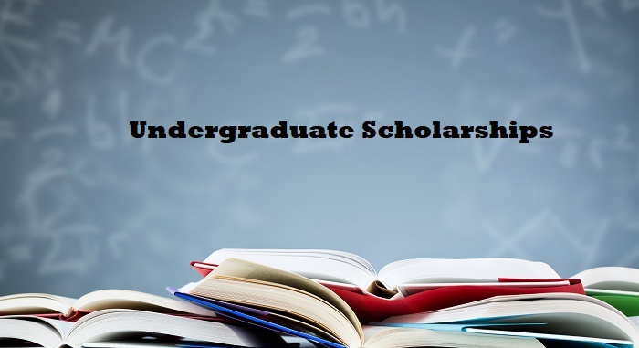 Undergraduate Scholarships - Complete List, Check