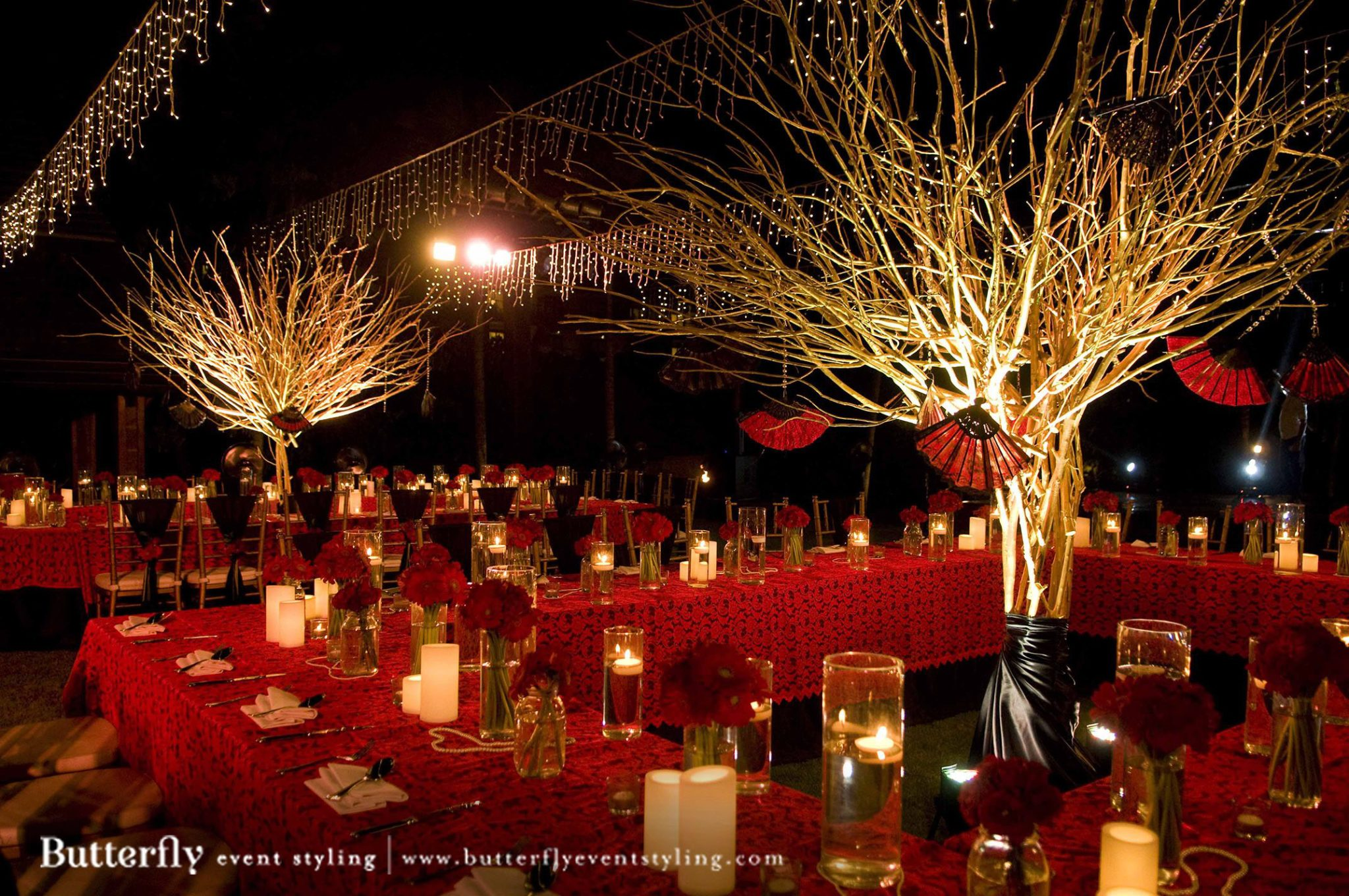 Lights Camera Action Butterfly Event Styling