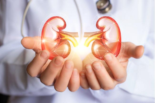 肾脏受损是怎么造成的? | Time Of Your Life