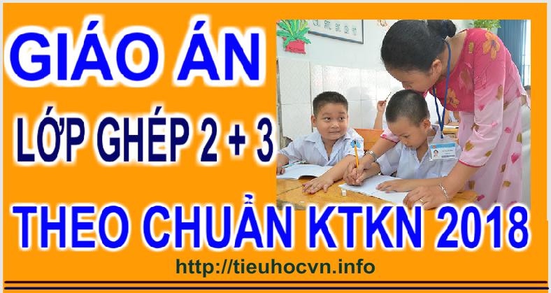 Giáo án Giảng dạy lớp ghép  Lớp 2 và lớp 3 theo Chuẩn kiến thức kĩ năng
