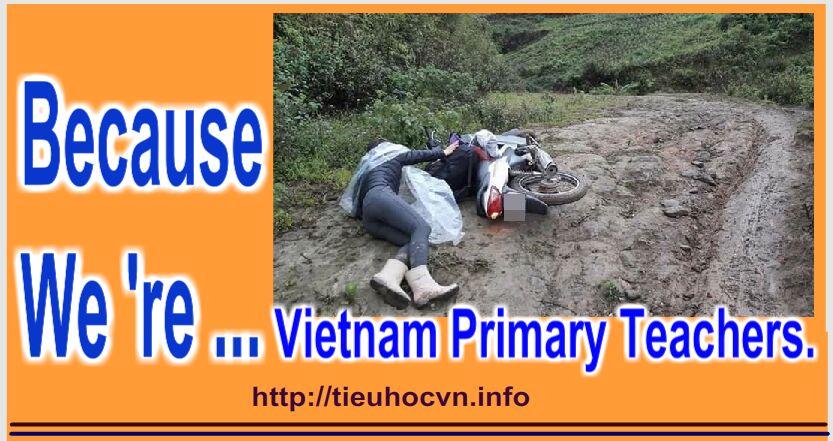 ...because we 're Vietnam Primary Teachers.
