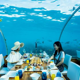 在這裡用餐是一次難忘體驗。