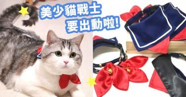 化身愛與正義~穿水手服的「美少貓戰士」?貓咪也要出來拯救地球了!